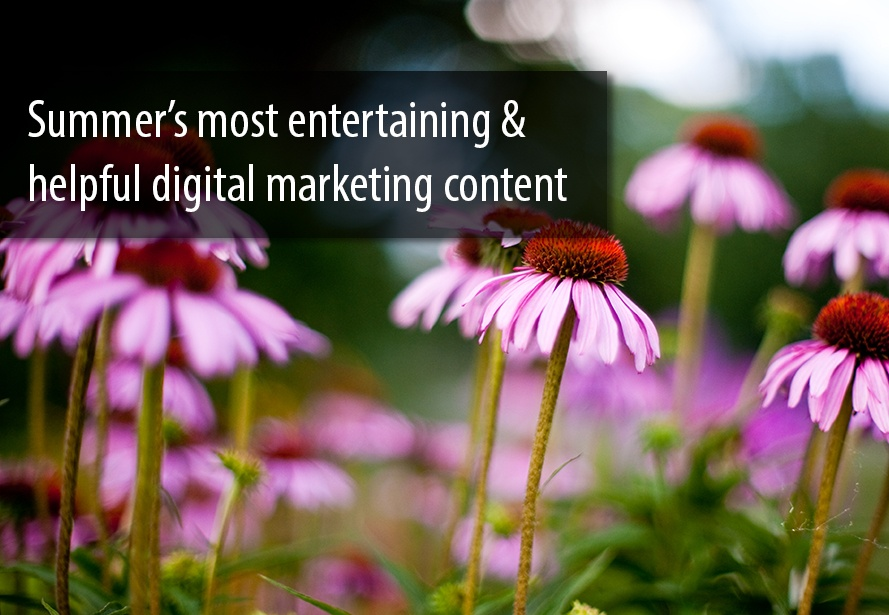 Summer_Digital_Marketing_Content
