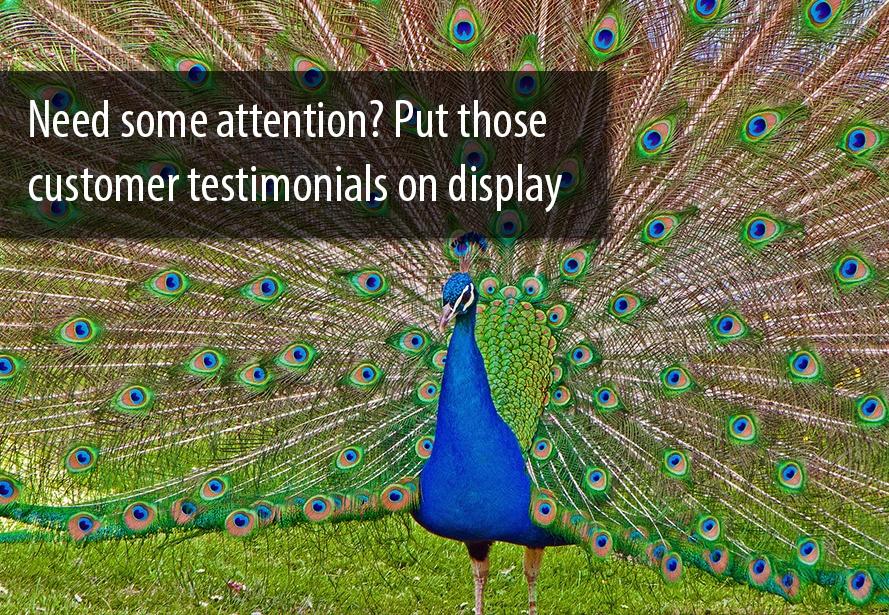 customer-testimonials.jpg